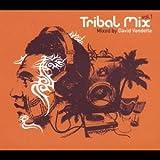 Tribal Mix Vol.1 Mixed By David Vendetta