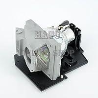 OPTOMA オプトマ プロジェクター交換用ランプ BL-FS300B OPTOMA THEME-S HD7200/HD80/HD80LV/HD8000/HD8000LV/HD800X/HD803/HD803LV/HD806/HD806ISF/HD80LV/HD81/HD81LV/HD930/HD980/HT1080/HT1200 EP910対応 OPTOMA オプトマ社外品