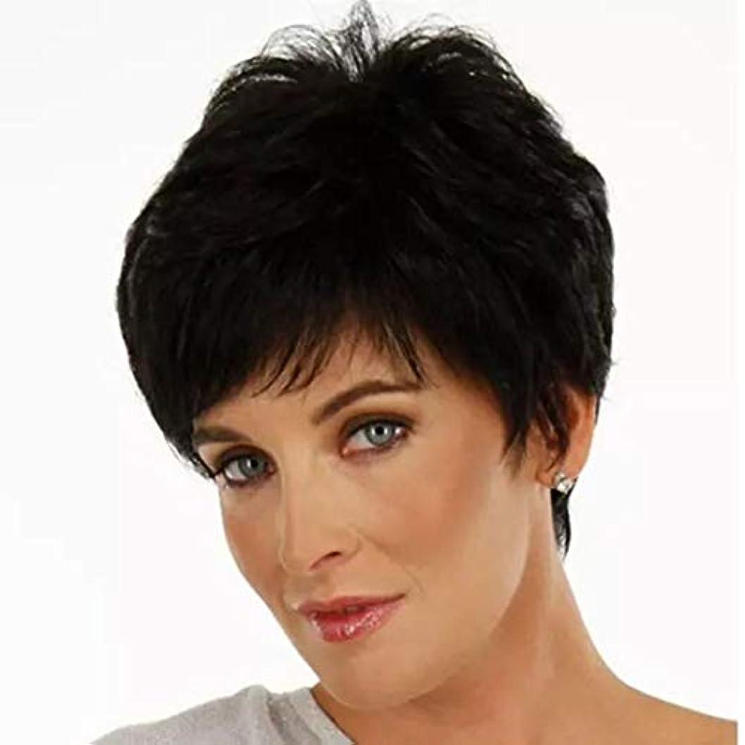 耐える石幸運なことにKerwinner 女性のための短いストレートヘアケアファイバー高温シルクウィッグヘッドギアをかつら
