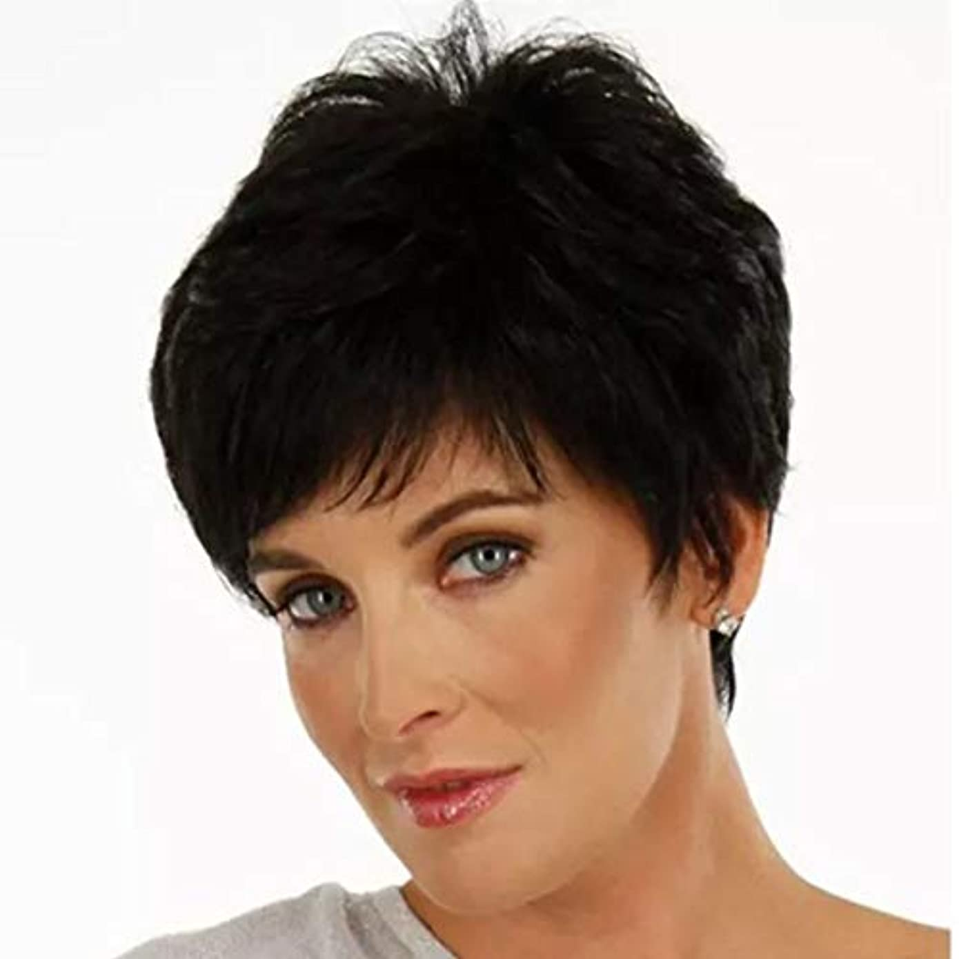 コンチネンタル隔離マダムKerwinner 女性のための短いストレートヘアケアファイバー高温シルクウィッグヘッドギアをかつら