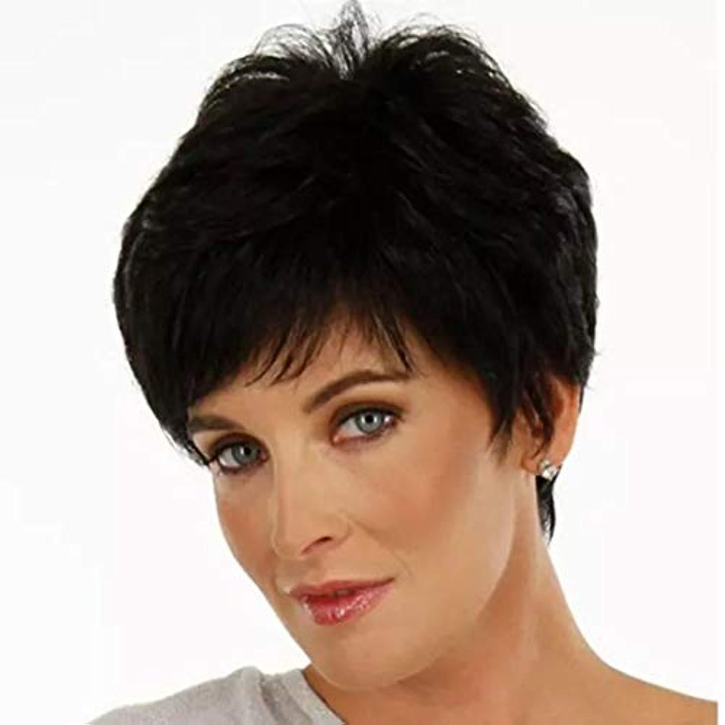 可聴最初にしみSummerys 女性のための短いストレートヘアケアファイバー高温シルクウィッグヘッドギアをかつら