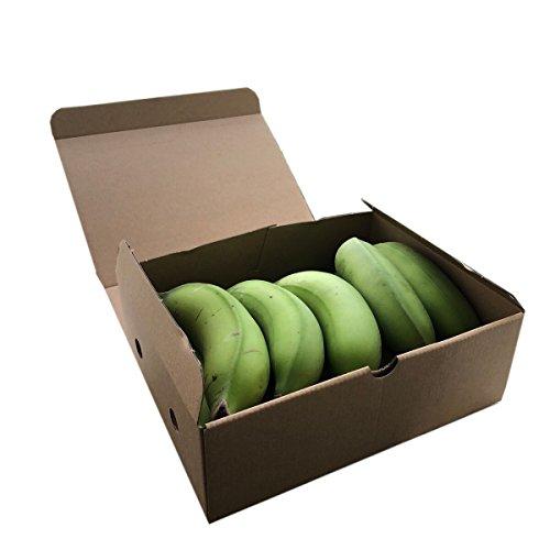 【期間限定】 沖縄県産 島バナナ(小笠原種) 予約販売 (約500g相当分) 数少ない国産バナナ 甘みと酸味のバランスが絶妙で濃厚な風味
