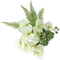 arne 観葉植物 人工観葉 造花 光触媒 フェイクグリーン 壁掛け 光触媒加工 インテリアグリーン Botanical EQ 22