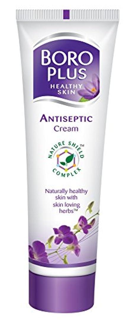 キャリッジエキス車Boroplus Antiseptic Cream, 120ml