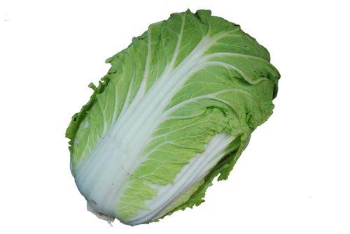 九州産 白菜(はくさい・ハクサイ) 1本 九州の安心で安全な野菜! 芯の部分は細切りにしてサラダで! 【九州・福岡・熊本・大分】