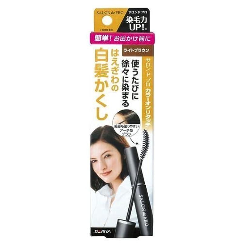 すり減るマーチャンダイザーピースサロンドプロ カラーオンリタッチ 白髪かくしEX ライトブラウン 15ml