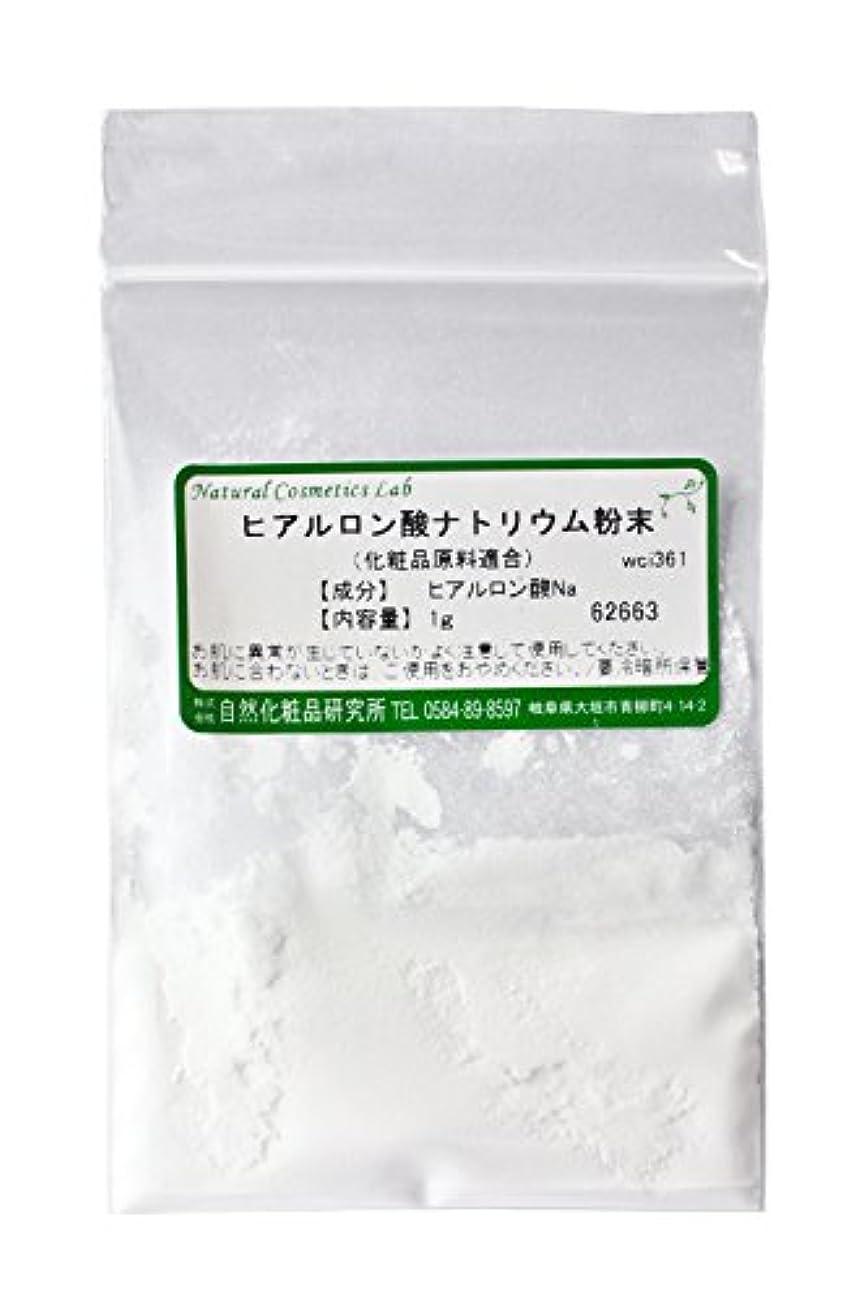 欠陥セマフォ中にヒアルロン酸ナトリウム粉末 1g 【手作り化粧品原料】