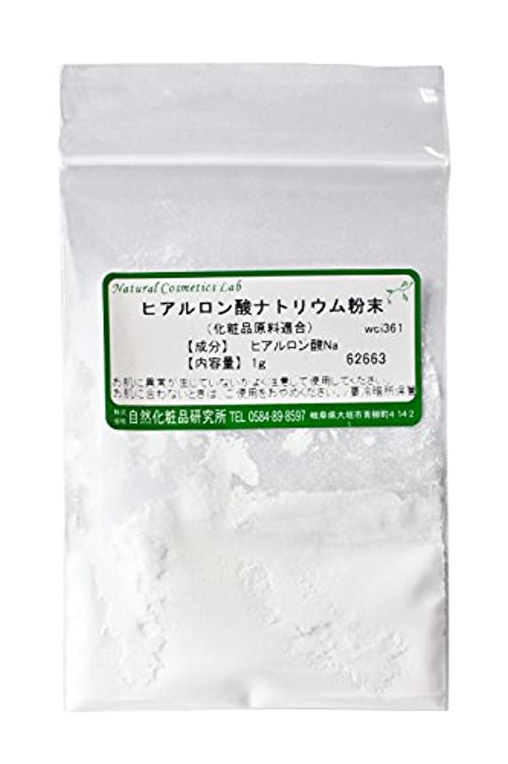 フロント色合い安らぎヒアルロン酸ナトリウム粉末 1g 【手作り化粧品原料】