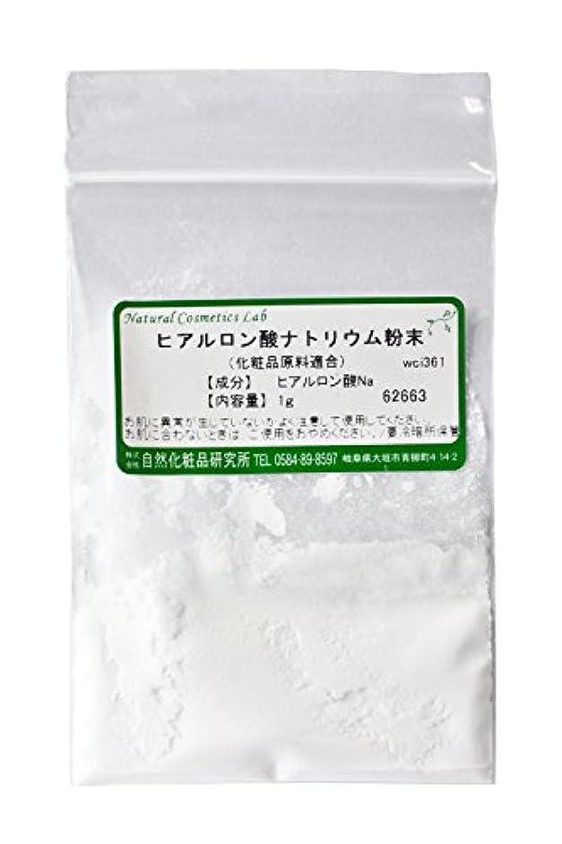 前文海上段階ヒアルロン酸ナトリウム粉末 1g 【手作り化粧品原料】