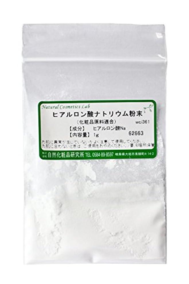 希望に満ちたメンダシティ劣るヒアルロン酸ナトリウム 粉末 1g 化粧品原料