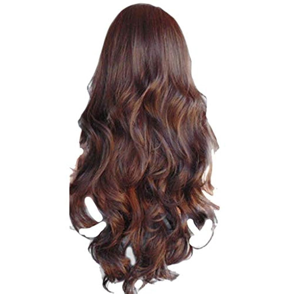 モックアンペア治す女性の長いウェーブのかかった巻き毛のファッションセクシーなかつらはヘアネットをバラ