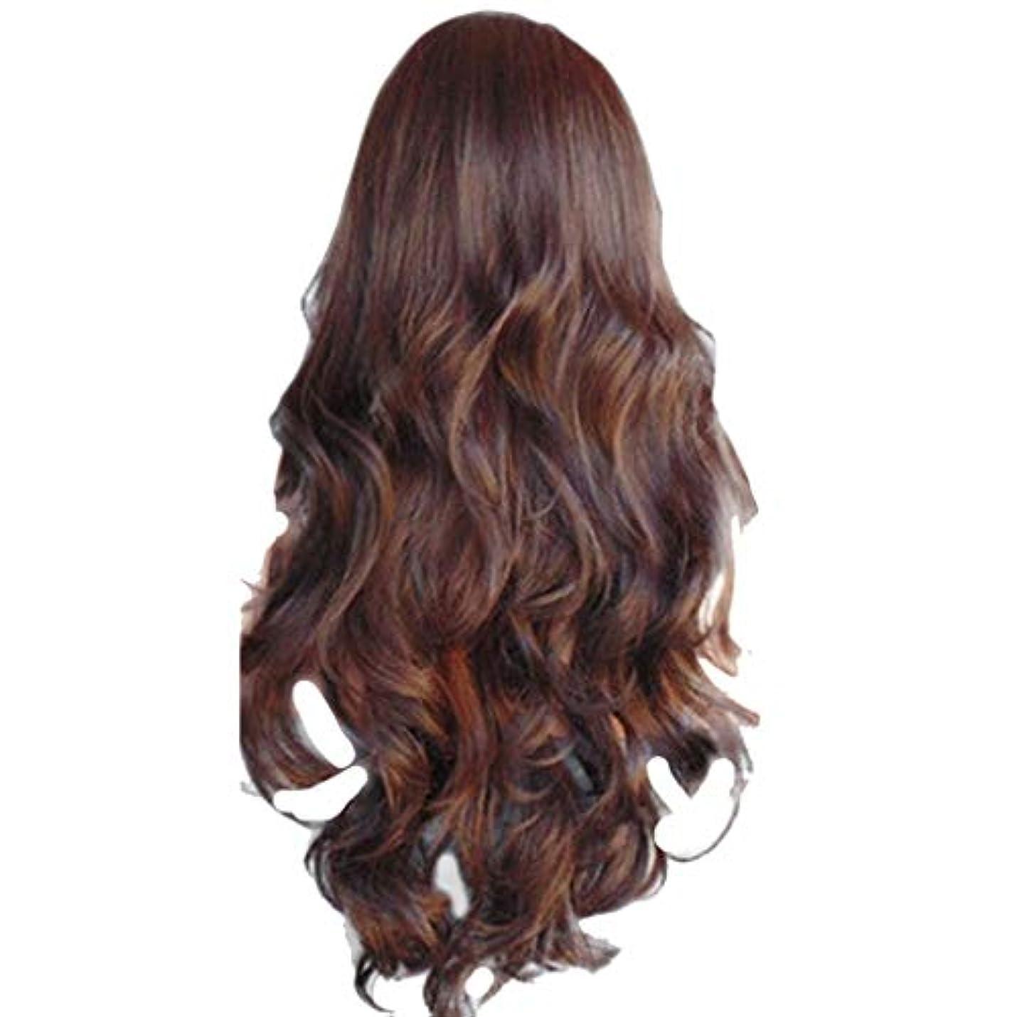 距離操る楽な女性の長いウェーブのかかった巻き毛のファッションセクシーなかつらはヘアネットをバラ