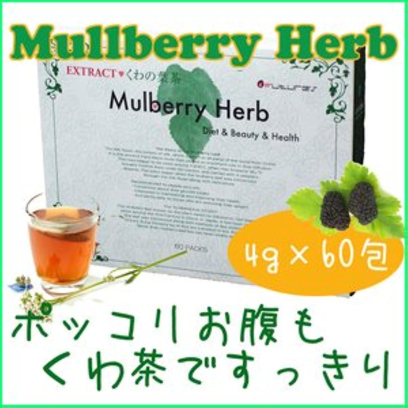略奪磁気溶岩桑の葉茶(クワの葉茶) 4g×60包