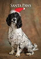 Cocker Spaniel Dogクリスマスカード。Large a5Seasonal Greeting Card with Scarlet封筒。Perfect for Dog Lovers