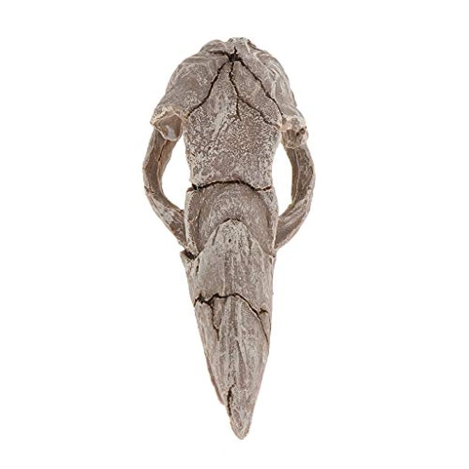 貞集中乗って爬虫類 恐竜 装飾 テラリウム DIY 造園 隠れ家 隠れ場所 耐熱性 - スタイル2