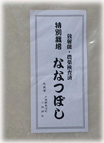 特別栽培 ななつぼし 白米 5kg(天恵...