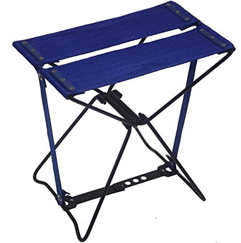 段階ギャラリー論理的に旅行に 行楽に どこでもチェア 椅子 青 専用バッグ付 レジャー アウトドアー 携帯 折り畳み椅子 高さ285mm 頑丈 コンパクト 軽量 持ち運び保管楽