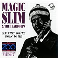 Zoo Bar Collection 2 by Magic Slim & Teardrops (1998-01-13)