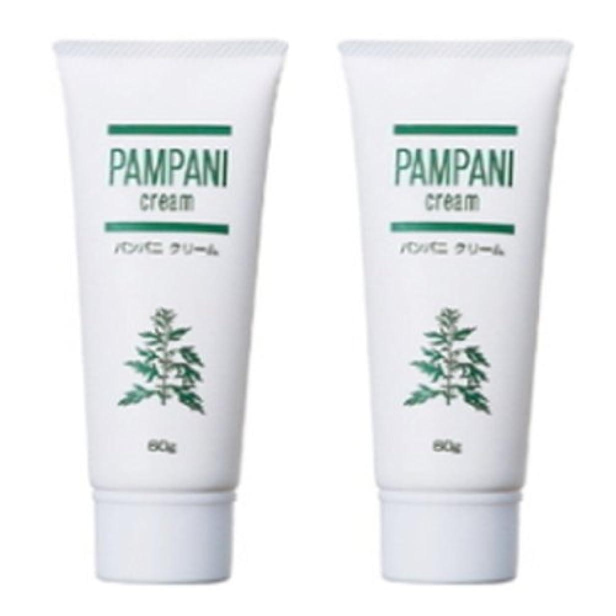 物理的な冷笑する練るパンパニ(PAMPANI) クリーム 60g×2本組
