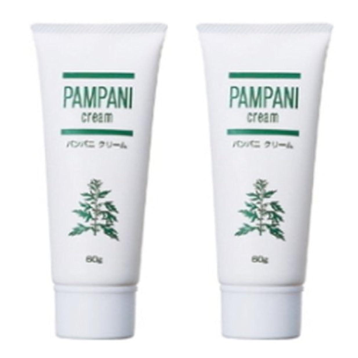 パンパニ(PAMPANI) クリーム 60g×2本組