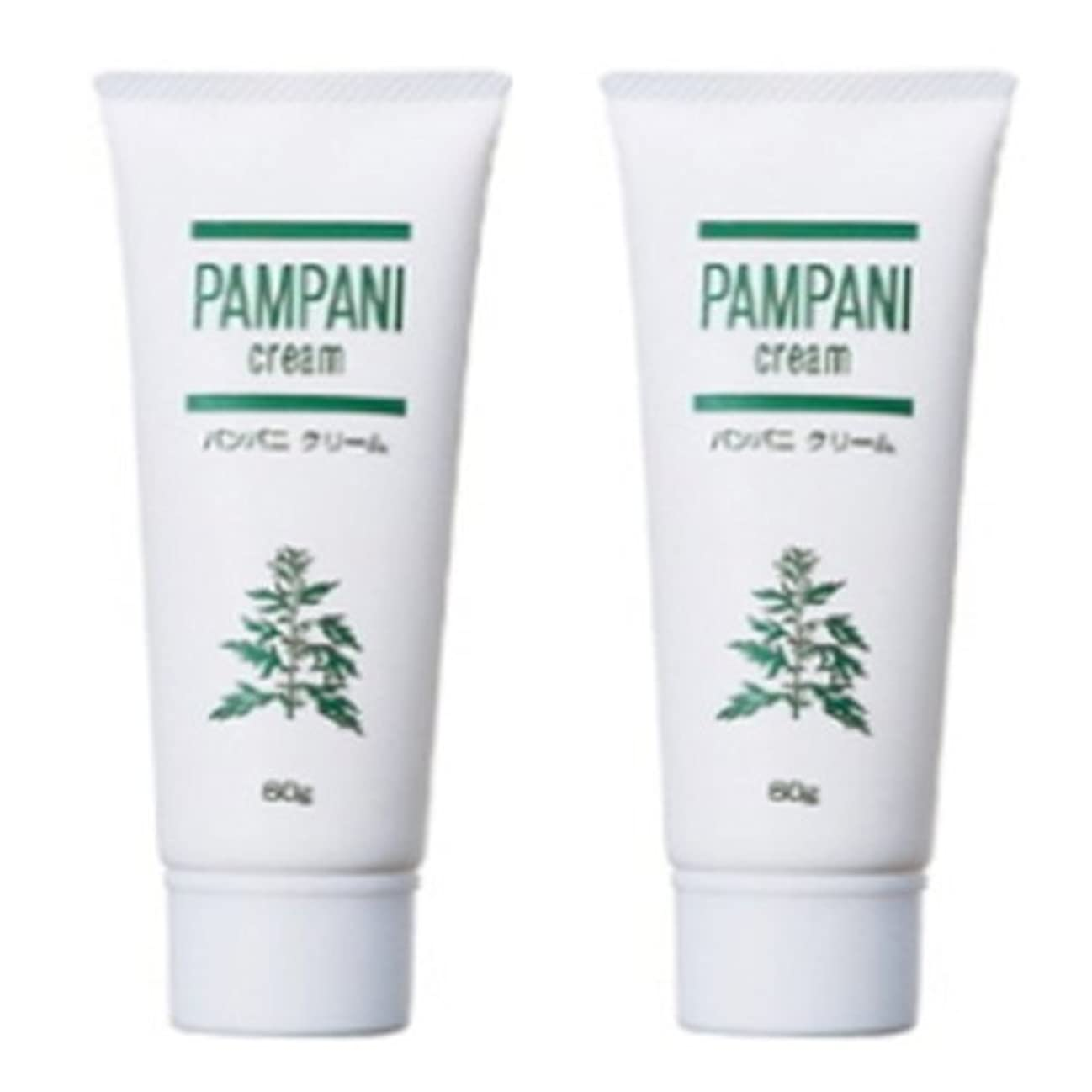 整理する経済的ダーリンパンパニ(PAMPANI) クリーム 60g×2本組