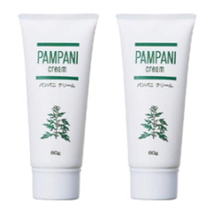 劇的模倣スーダンパンパニ(PAMPANI) クリーム 60g×2本組