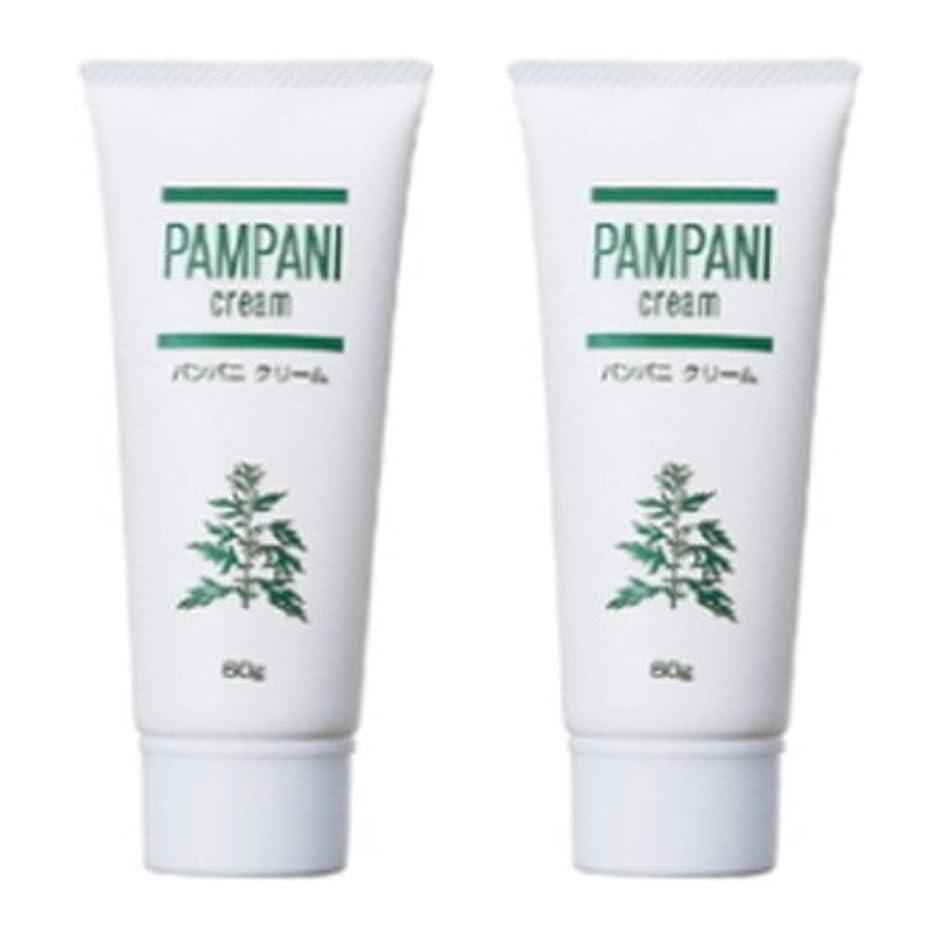 バース収容する成熟したパンパニ(PAMPANI) クリーム 60g×2本組