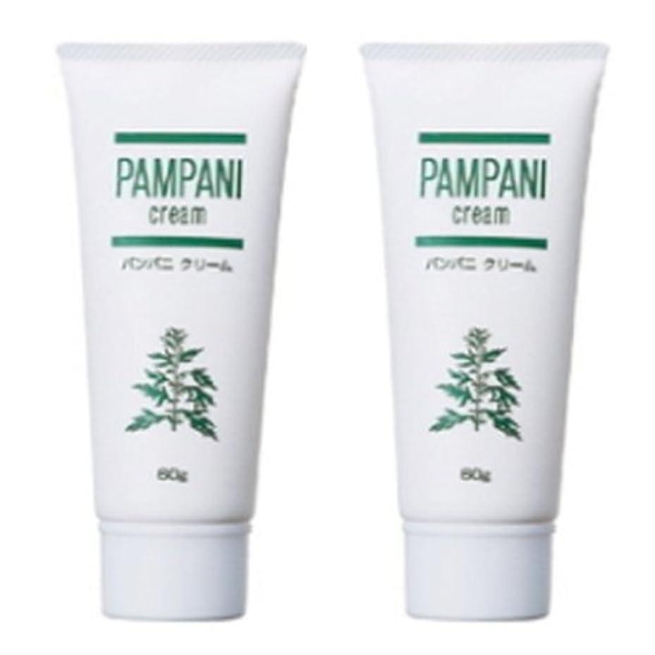 成長する排除するのどパンパニ(PAMPANI) クリーム 60g×2本組