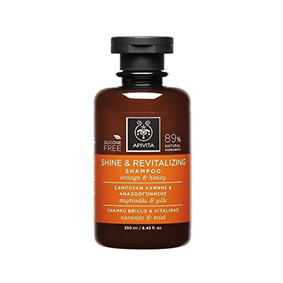 識別するシルエットお酢アピヴィータ Shine & Revitalizing Shampoo with Orange & Honey (For All Hair Types) 250ml [並行輸入品]