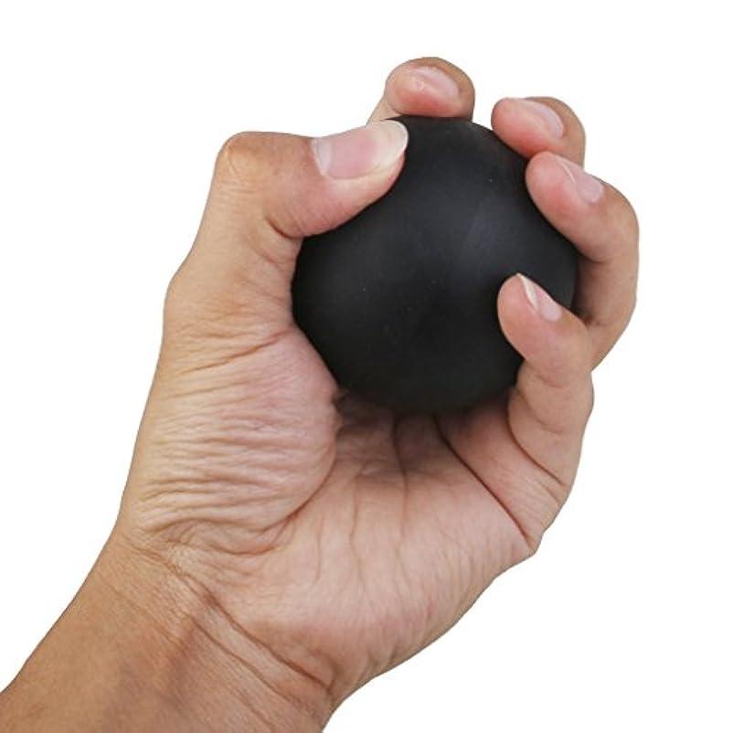 フロント証言ステンレス2個セット 手のひら 足 腕 首 背中 足首 ジム ホーム 運動 マッサージボール ラクロスマッサージボール ブラック