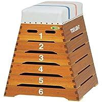 TOEI LIGHT(トーエイライト) 跳び箱ST6段小型 下幅75(上幅35)×奥行80×高さ80cm 6段 小学校向 T2698 T2698