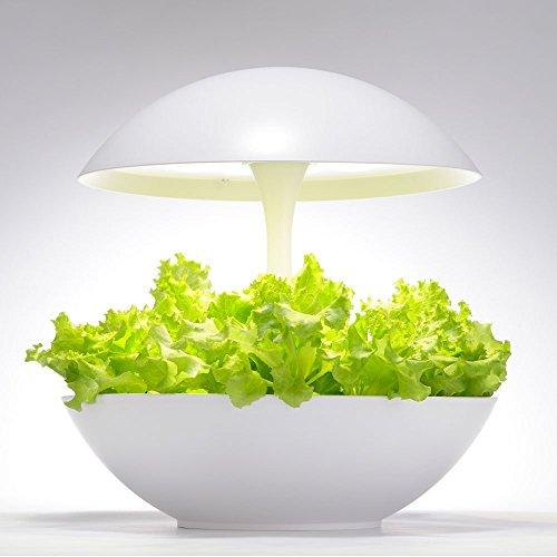 LED水耕栽培キット Akarina01 アカリーナ 灯菜 テララ オリンピア照明