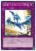 遊戯王 ピ 星堕つる地に立つ閃コウ(N)(PP17-JP020)
