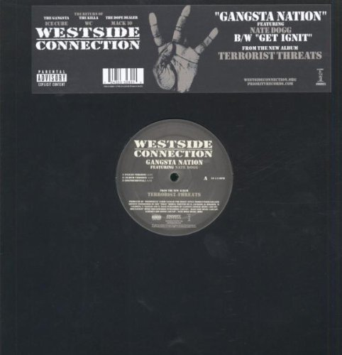 Gangsta Nation [12 inch Analog]