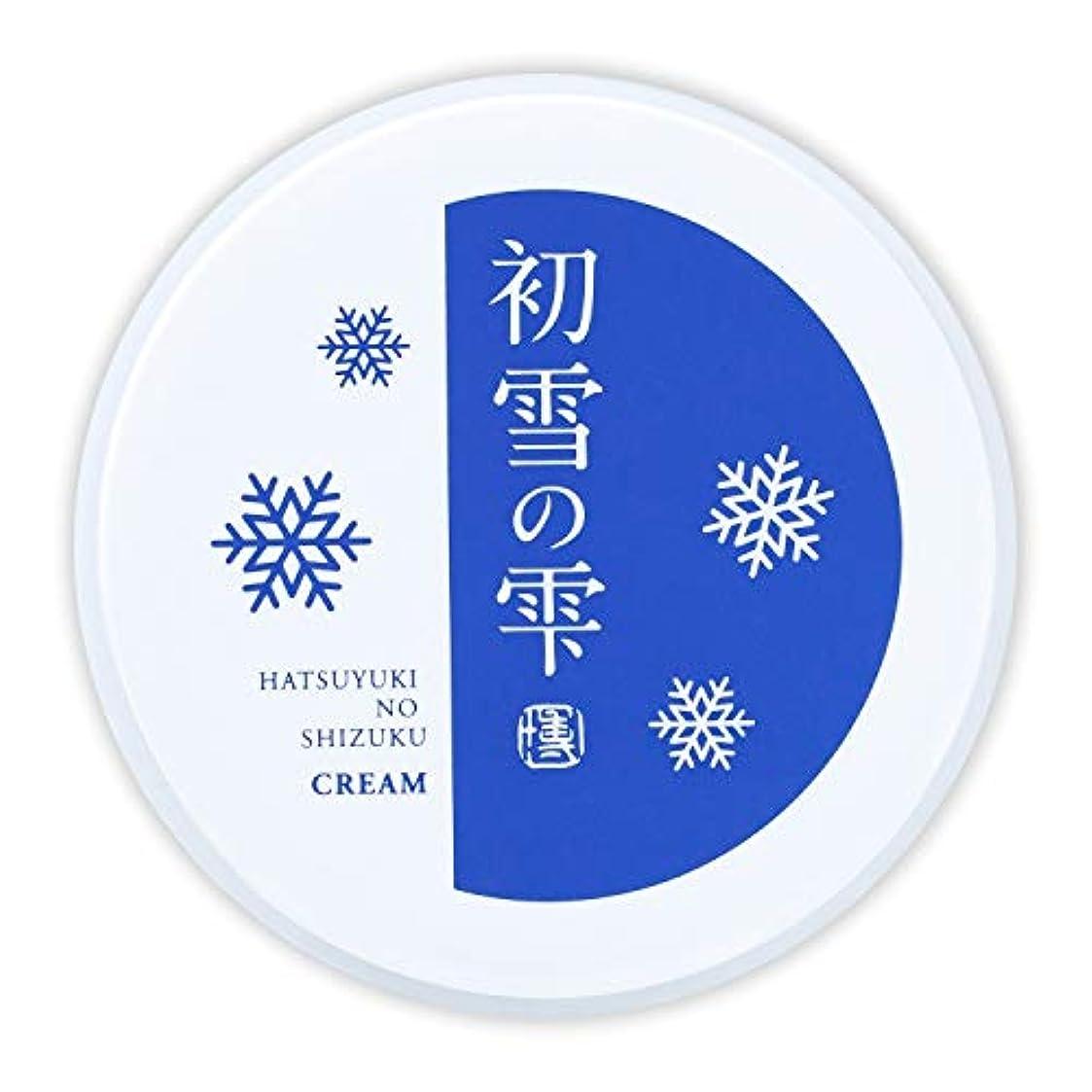 巨大な急降下節約する初雪の雫 オールインワン 保湿 クリーム 27g 約2週間分 [プラセンタ ヒアルロン酸 セラミド アルブチン ビタミンC ]