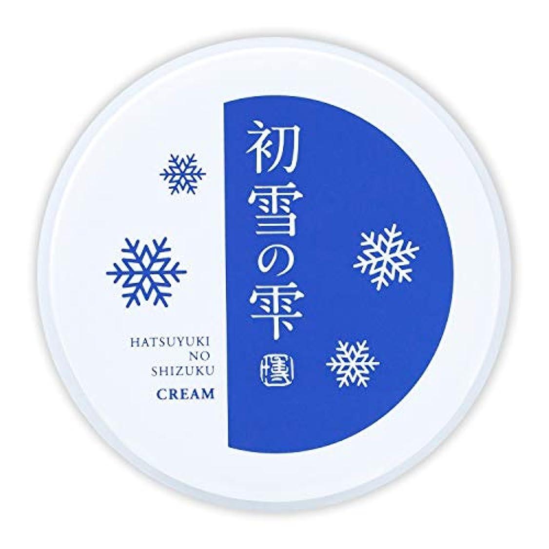 音節背骨件名初雪の雫 オールインワン 保湿 クリーム 27g 約2週間分 [プラセンタ ヒアルロン酸 セラミド アルブチン ビタミンC ]