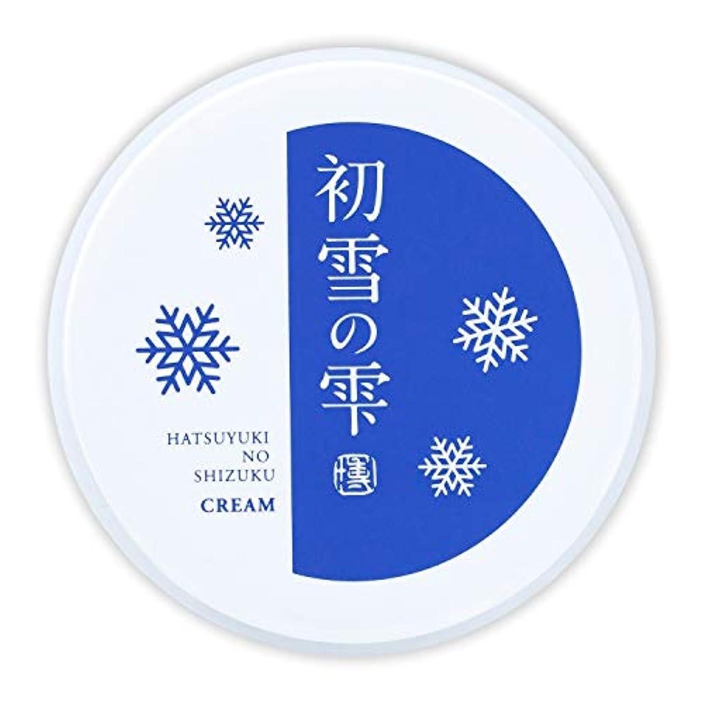 会計士気になる消える初雪の雫 オールインワン 保湿 クリーム 27g 約2週間分 [プラセンタ ヒアルロン酸 セラミド アルブチン ビタミンC ]