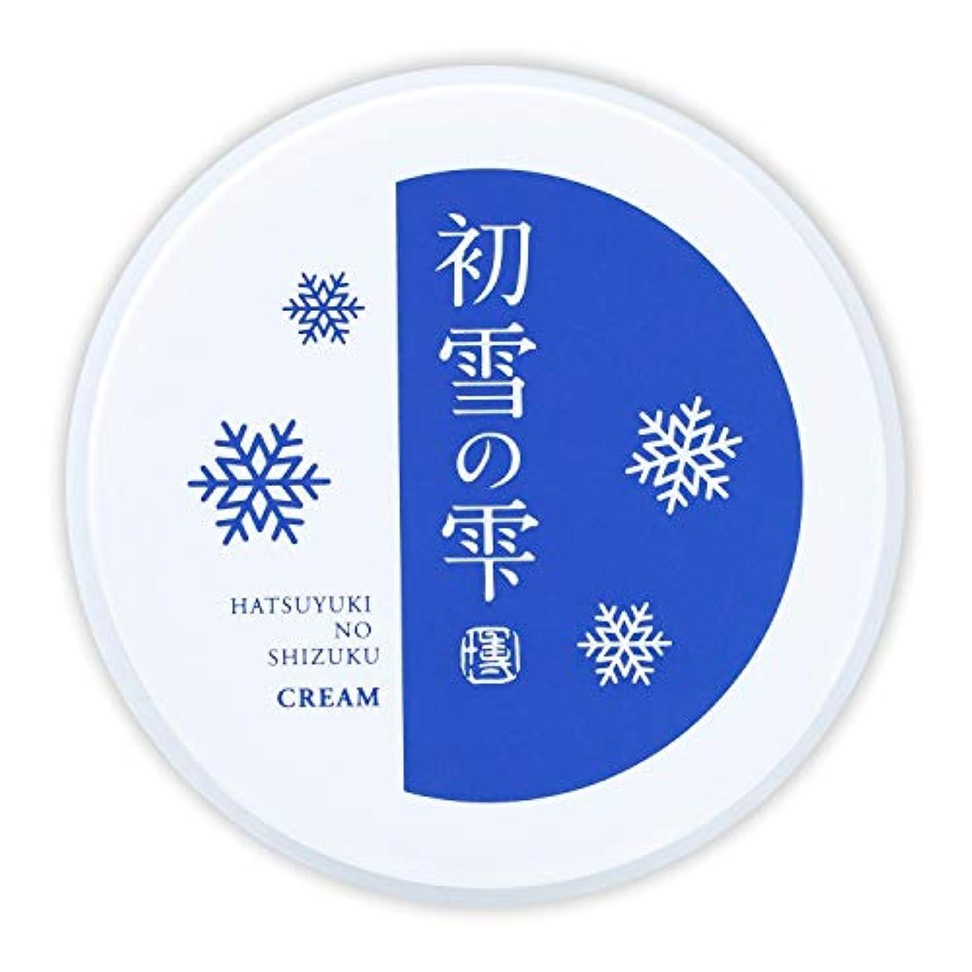 引退する誘惑尊敬する初雪の雫 オールインワン 保湿 クリーム 27g 約2週間分 [プラセンタ ヒアルロン酸 セラミド アルブチン ビタミンC ]