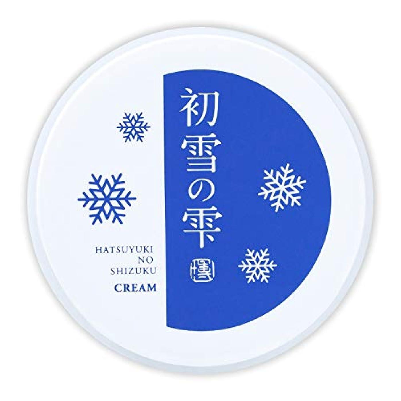 そよ風代表話初雪の雫 オールインワン 保湿 クリーム 27g 約2週間分 [プラセンタ ヒアルロン酸 セラミド アルブチン ビタミンC ]