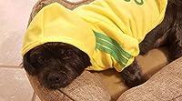 イエロー、M:ペット犬猫セーター子犬Tシャツ暖かいフード付きコートは、アパレル服