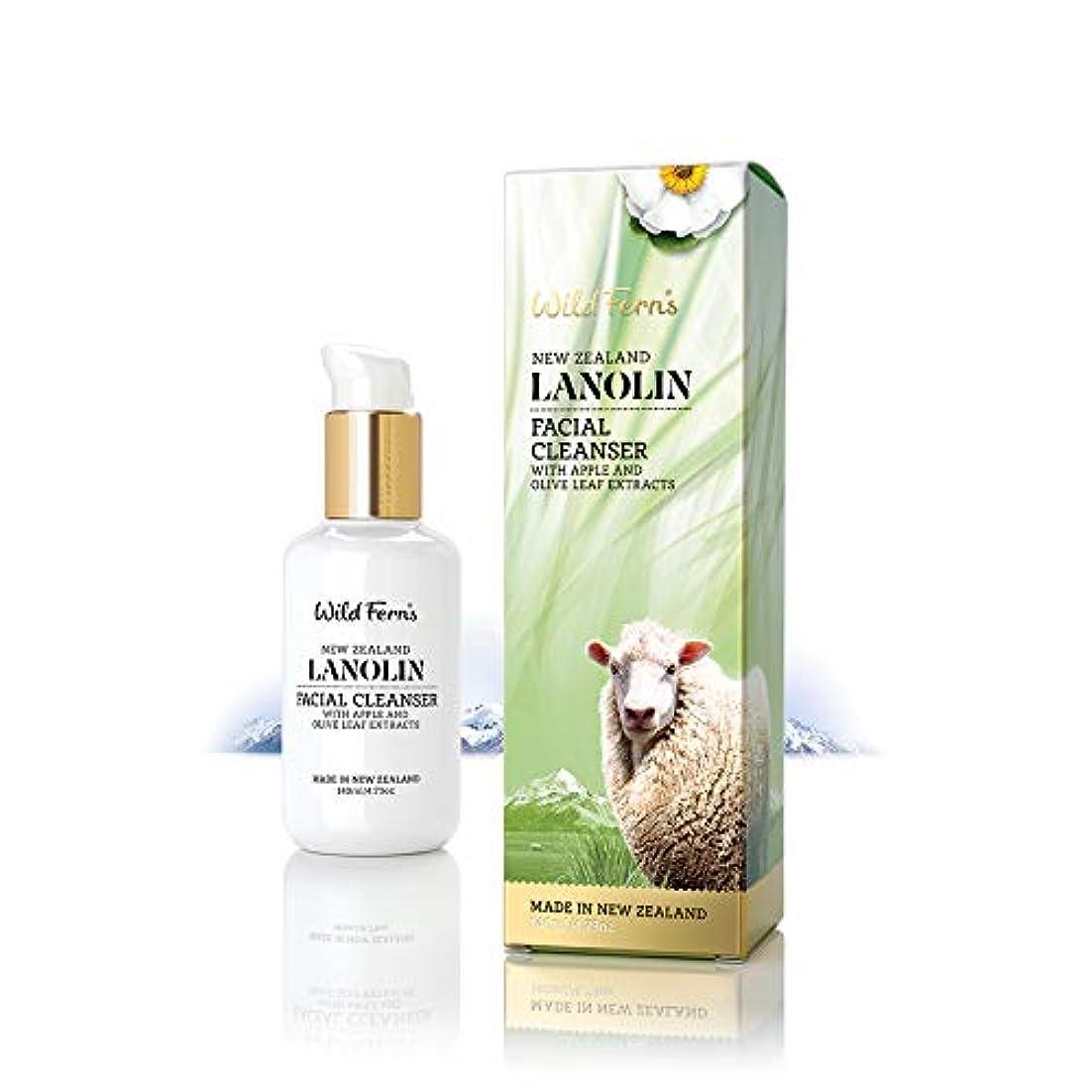 レイデータ平凡Lanolin Facial Cleanser 140ml