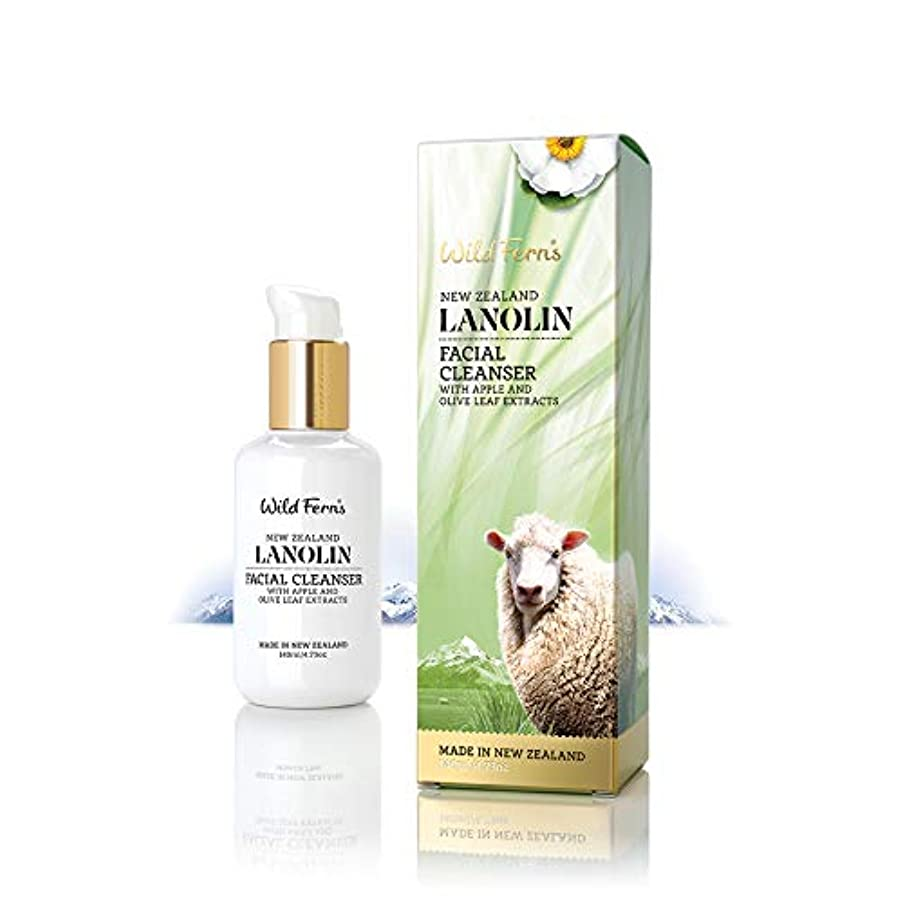 順応性キウイ洋服Lanolin Facial Cleanser 140ml