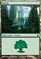 Magic the Gathering: Forest (303) (Foil) - Ravnica