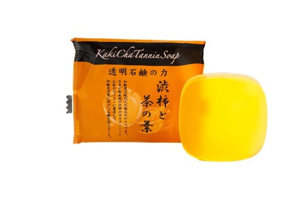 件名添付化合物カインド カキチャタンニンソープ 20g