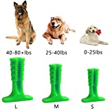 Dog Toothbrush Toy Clean Teeth Brushing S Pet Brush Mouth Dogs BETTERBRUSH Green L