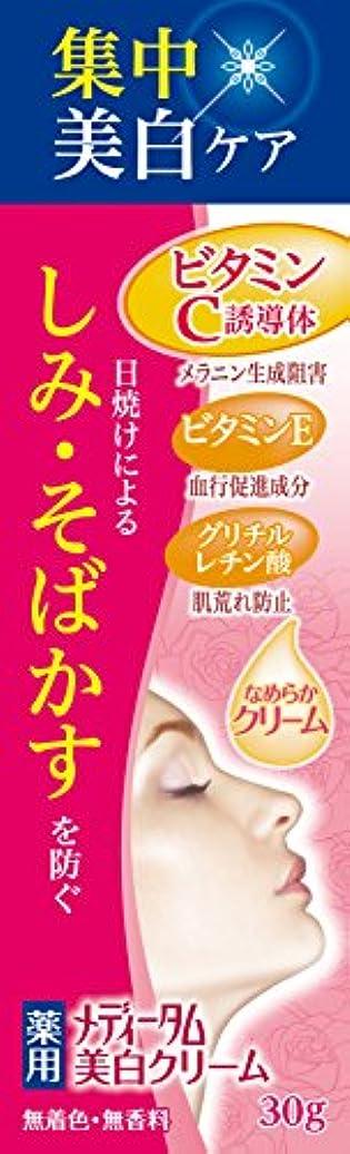 コロニー速記新聞メディータム薬用美白クリーム 30g