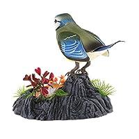 dailymall プラスチック音響制御は教育ギフトのためのさえずりの歌う鳥のおもちゃを活動化させます - #1