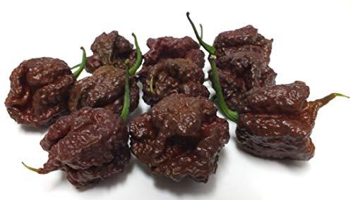 冷凍|最強激辛唐辛子 キャロライナ・リーパー果実×15個入り(チョコレート色・品種)