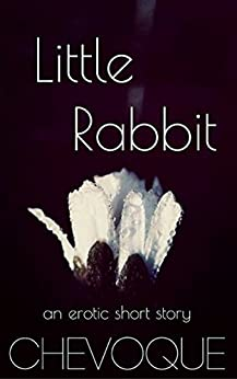 little rabbit (Undisclosed Desires Book 2) by [Chevoque]