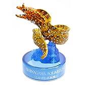 カプセル 日本水族館立体生物図録 カプセルアクアリウム3 5.トラウツボ